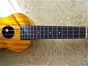 ukulele_FS5G_1.JPG