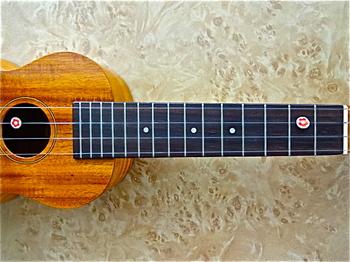ukulele_FS5G_2.JPG
