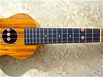ukulele_famous_fs5g.JPG