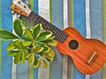 ukulele_famousFS5G.jpg